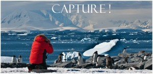 Antarctic Expeditions: 2014 Antarctica Photo Tour - A Photographer's Antarctica Dream Adventure Cruise