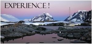 Antarctic Expeditions: 2014 Antarctica Photo Tour - The Ultimate Antarctica Experience